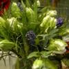 buketter__arrangemang_20121210_2099121733.jpg