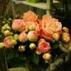 skicka_blommor_20141128_1192698134.jpg