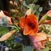 skicka_blommor_20161220_1823628705.jpg