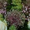 begravningsbukett_20130913_1557561515.jpg