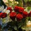 skicka_blommor_20180210_1064320816.jpg
